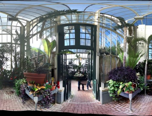 A Spiritual Greenhouse